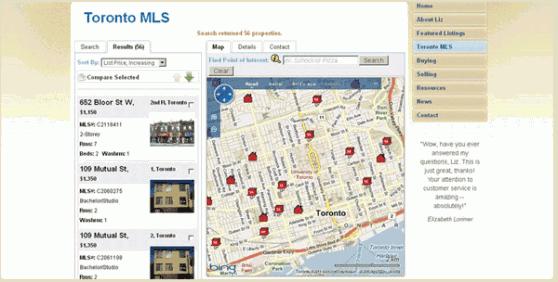 liz_bartliff_toronto_real_estate_wordpress_web_design_toronto_MLS-558x282