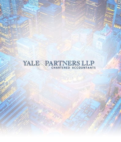 feature_yale_partners